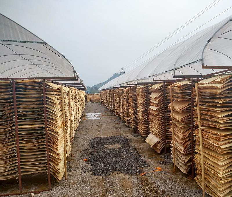 建筑木胶板原料