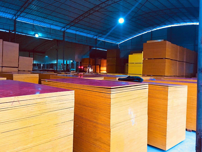 建筑木胶板仓库