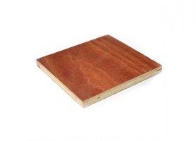 供应 建筑工程模板木胶板胶合板边条板专业生产