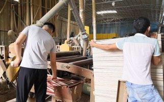 有没有戒赌所木胶板生产裁边机工作中