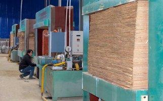有没有戒赌所建筑模板生产设备-冷压机