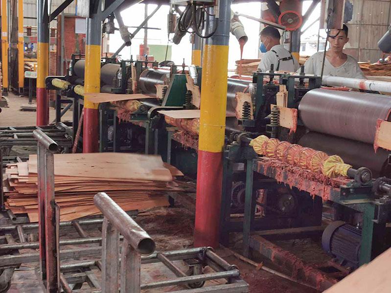 建筑木胶板生产中