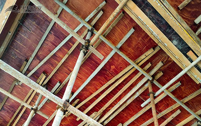 工地用建筑木胶板